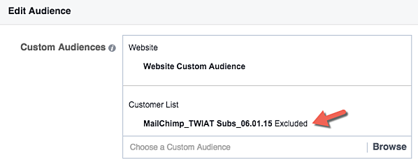 Custom Audience Exclusions