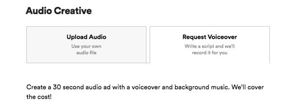 spotify ads interface