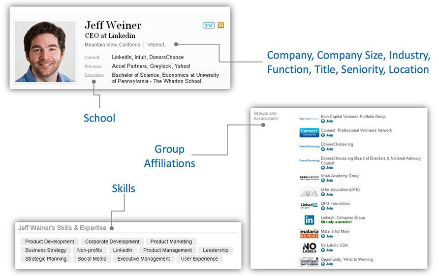 LinkedIn Ads Member Profiles