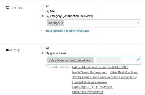 Linkedin Ads Targeting Sales Manager