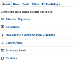 Google Analytics options