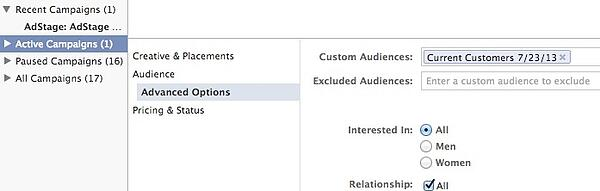 Selecting a custom audience